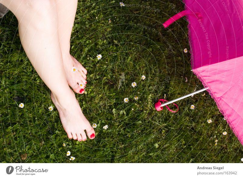 [Harusaki|DD] Pink zu pink zu grün Erholung Wiese feminin Frühling Fuß Park Beine Zufriedenheit rosa frisch Fröhlichkeit einzigartig Regenschirm Lebensfreude