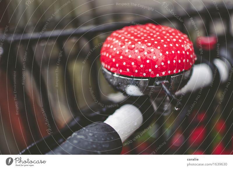 Die kleinen Freuden schön weiß rot Herbst lustig Spielen außergewöhnlich Regen leuchten Fahrrad Fahrradfahren Hinweisschild nass niedlich Fahrradtour