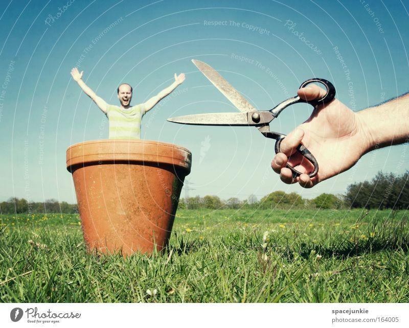 Rückschnitt Mensch Himmel Mann Natur Pflanze Sommer Erwachsene Gesicht Wiese Leben Landschaft Haare & Frisuren Frühling Kunst Feld maskulin
