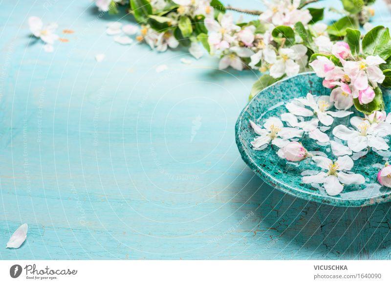Aroma-Schale mit Wasser und weißen Blüten Stil Design Gesundheit Wellness Meditation Duft Kur Spa Dekoration & Verzierung Natur Pflanze Frühling Blume Blatt