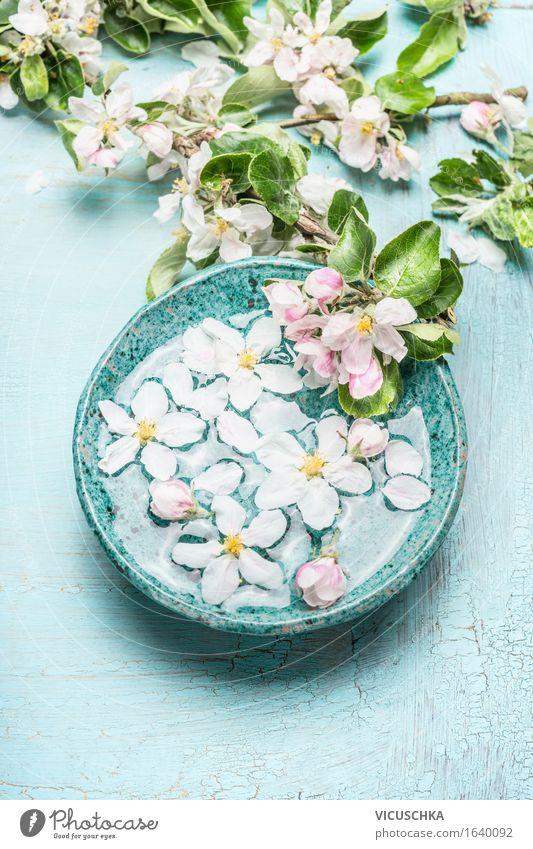 Schwimmende Blumen in türkisblauem Schüssel Stil Design schön Körperpflege Kosmetik Gesundheit Alternativmedizin Wellness Leben Wohlgefühl Sinnesorgane Erholung