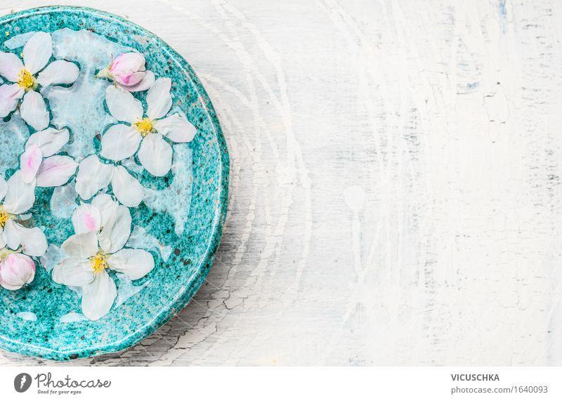 Weiße Blumen in türkisblauer Schüssel mit Wasser Natur Pflanze schön Erholung Blatt Blüte Stil Gesundheit rosa Design Tisch Wellness Bad Im Wasser treiben