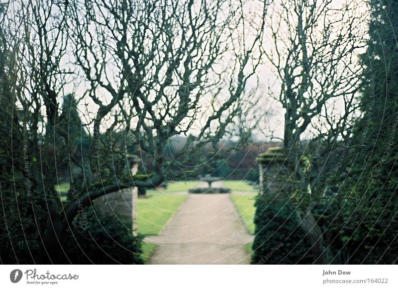 Newstead Abbey (II) alt Baum Pflanze Erholung Wiese Gras Garten Traurigkeit Park Denken trist Sträucher Spaziergang Kultur Vergänglichkeit Brunnen