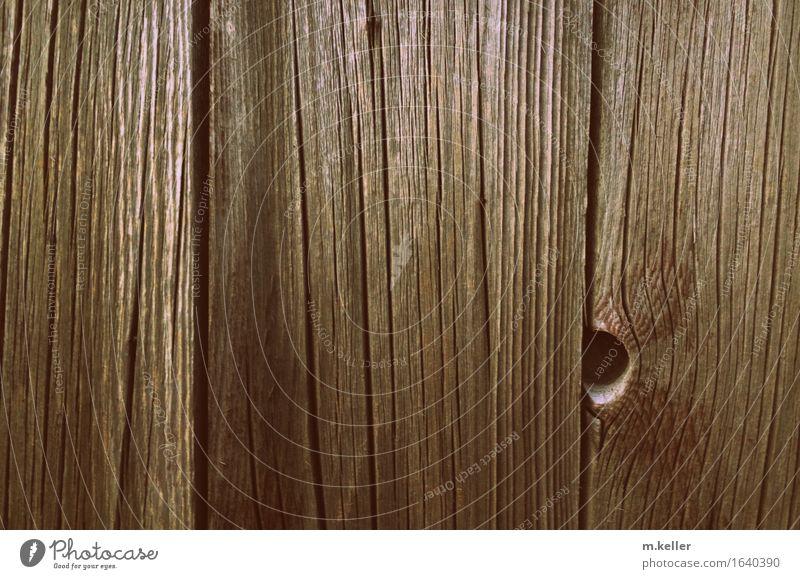 wood Garten braun Fassade einzigartig