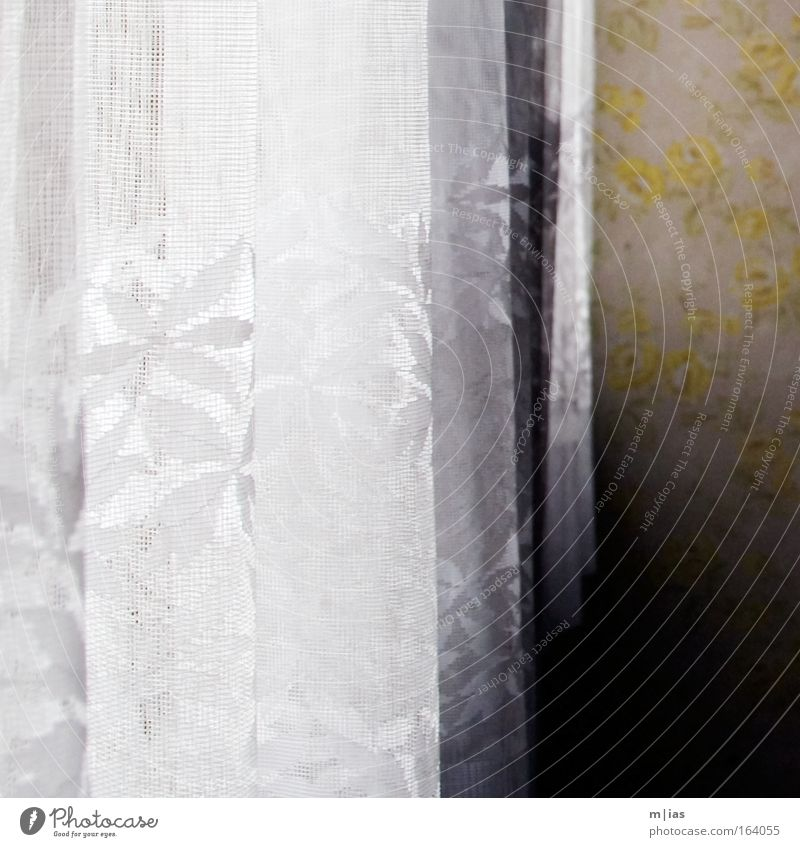 zugezogen. alt weiß Ferien & Urlaub & Reisen Fenster Bewegung Traurigkeit Gebäude Innenarchitektur Raum Wohnung Glas Ausflug Tourismus ästhetisch authentisch