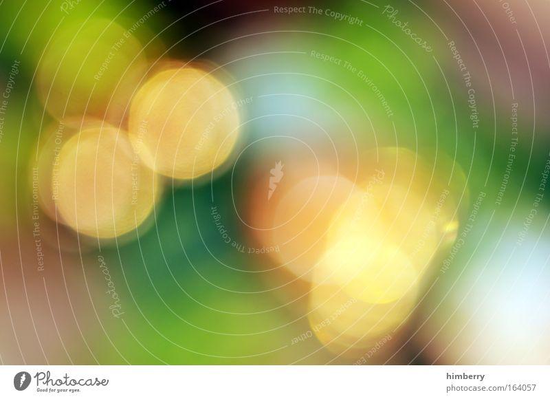 fade out schön grün Erholung ruhig gelb Umwelt Leben Stil Kunst elegant Zufriedenheit Lifestyle Design frisch Show Freundlichkeit