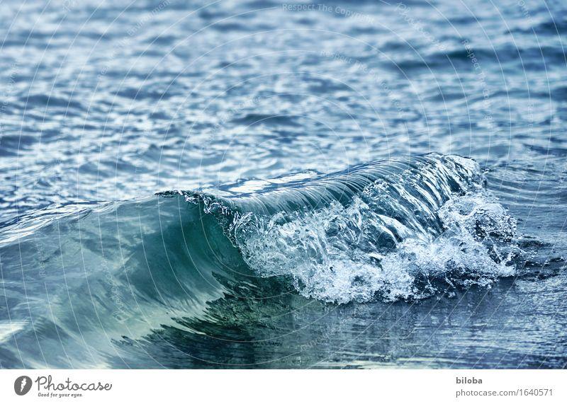Welle Natur blau Wasser weiß Frühling Wellen Kraft ästhetisch Seeufer Wasserkraftwerk