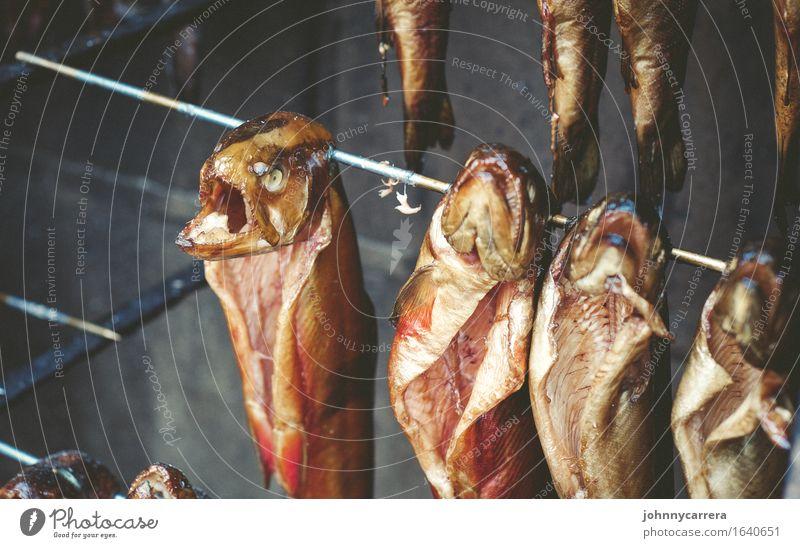 Fischköppe Lebensmittel Angeln Meer Tier Wasser Totes Tier Tiergruppe Grill Rost Rauch Essen hängen verkaufen bedrohlich Ekel gruselig maritim Völlerei gefräßig