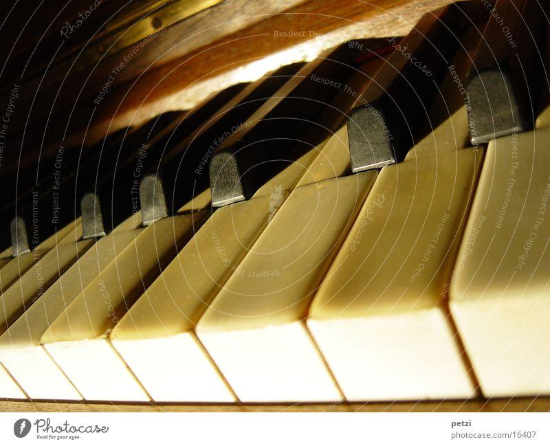 Tasten alt weiß schwarz Holz berühren Handwerk Klavier Musikinstrument Lichteinfall Produktion Messing Elfenbein