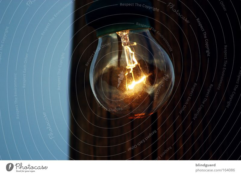 Erleuchtung dunkel Metall hell Glas Elektrizität Romantik leuchten heiß fest Idee Glühbirne Umweltschutz Energie sparen Stromverbrauch Glühdraht Glaskolben