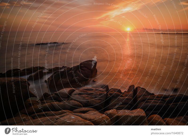 feuerrot Natur Landschaft Luft Wasser Himmel Wolken Horizont Sonnenaufgang Sonnenuntergang Sommer Wetter Schönes Wetter Felsen Küste Fjord Riff Meer