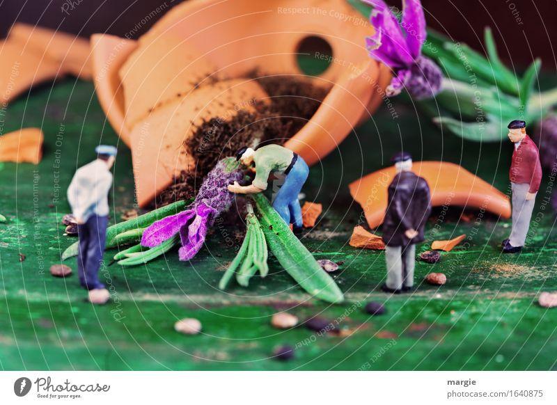 Miniwelten - Malheur Mensch Mann Pflanze grün Blume Blatt Erwachsene Blüte maskulin orange
