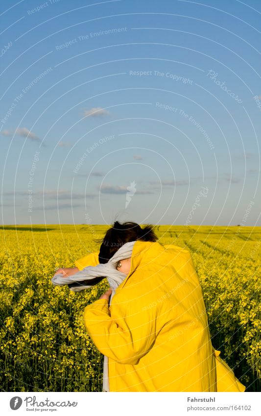 Auf dem Rappsfeld Himmel blau gelb Glück Fröhlichkeit Jacke