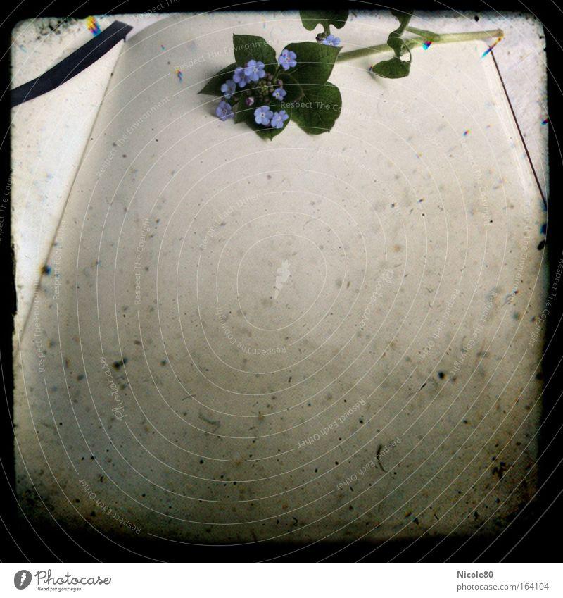 Poesiealbum I alt Einsamkeit Traurigkeit Stimmung Kommunizieren einfach Kitsch Wunsch historisch Partnerschaft weinen Erinnerung Dia Schreibwaren Krimskrams