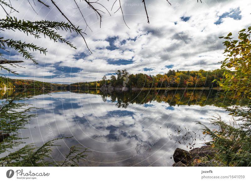 Natur Ferien & Urlaub & Reisen Baum Landschaft Blatt Wolken Herbst See Gelassenheit Teich Wildpflanze