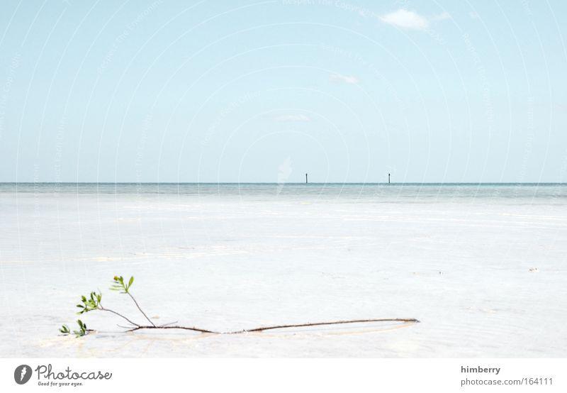 raffaello schön Sonne Meer blau Sommer Strand Ferien & Urlaub & Reisen ruhig Ferne Erholung Freiheit Zufriedenheit groß Hoffnung Insel Tourismus
