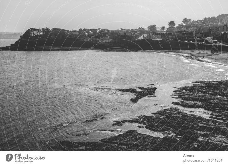Rückzugsgebiet Ferien & Urlaub & Reisen Landschaft Küste Meer Atlantik Ebbe Gezeiten Landzunge Klippe Strand maritim trocken ruhig Fernweh Ferne Großbritannien