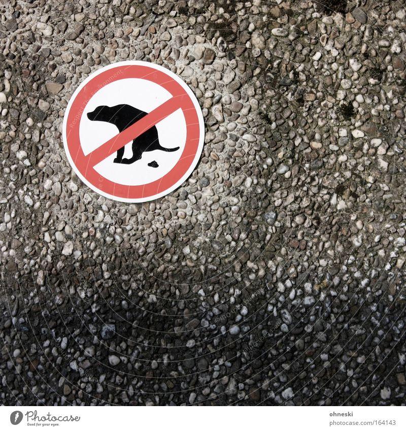 Sche!?en verboten! Hund Haus Wand Stein Mauer Angst Fassade Schilder & Markierungen Hinweisschild Warnhinweis Jagd Haustier Verbote Ekel Warnung Warnschild