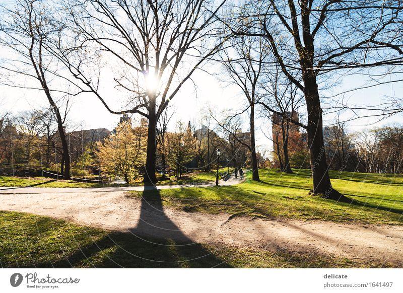 Central Park Himmel Natur Ferien & Urlaub & Reisen Pflanze Sonne Baum Erholung Ferne Frühling Wege & Pfade Gras Garten Freiheit Tourismus Freizeit & Hobby