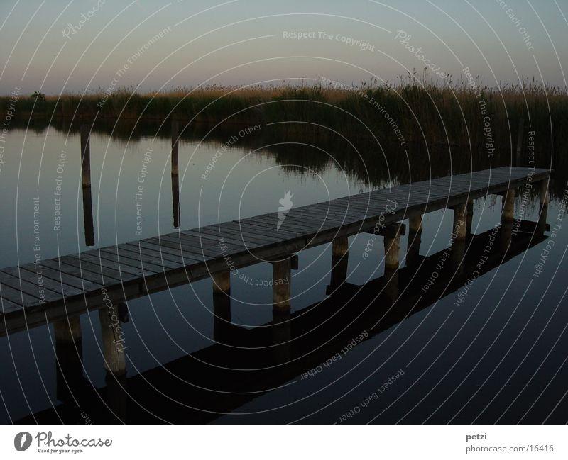 Der Steg Wasser See Gefühle Stimmung Traurigkeit Liebeskummer Heimweh Einsamkeit Balken Schilfrohr Abenddämmerung Sonnenuntergang Farbfoto mehrfarbig