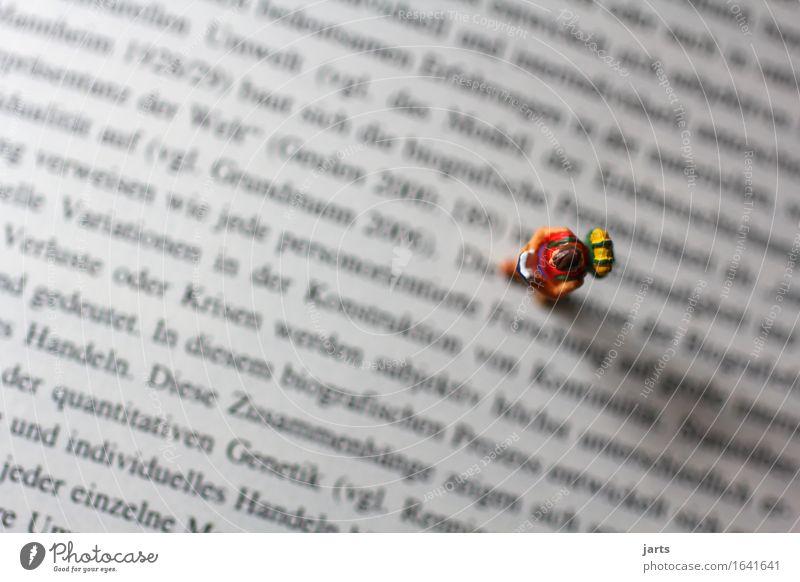 zwischen den Zeilen lesen lernen Prüfung & Examen Mensch 1 Papier gehen Wissen Buch Buchstaben Farbfoto mehrfarbig Studioaufnahme Nahaufnahme Detailaufnahme