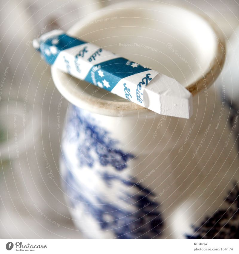 kreidebleich alt blau schön weiß Blume kalt natürlich Denken außergewöhnlich Stimmung hell träumen frisch Dekoration & Verzierung Glas ästhetisch