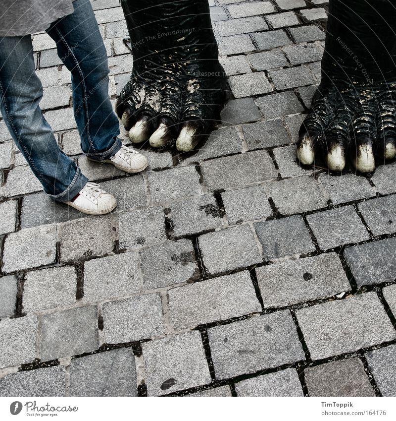 Mein neuer Freund Mensch Tier Erwachsene Straße Beine Paar Beine Fuß paarweise stehen Schuhe Jeanshose Kopfsteinpflaster Partner Turnschuh Pfote