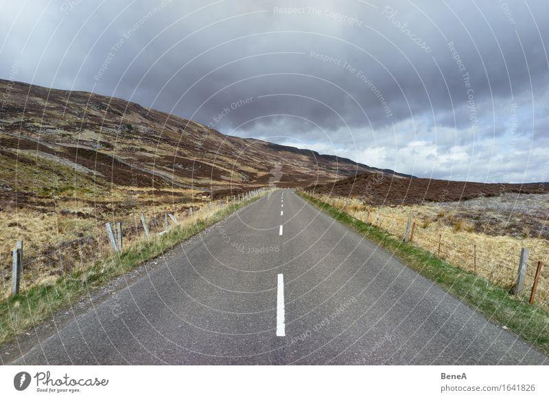 How many roads must a man walk down? Natur Landschaft Tier Himmel Wolken Gewitterwolken Wiese Feld Hügel Schottland Menschenleer Verkehrswege Straßenverkehr