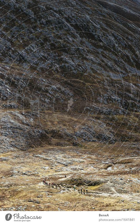 Hiking Mensch Natur Ferien & Urlaub & Reisen Landschaft Einsamkeit Ferne Berge u. Gebirge Leben Bewegung Gras Freiheit Menschengruppe gehen Felsen Tourismus
