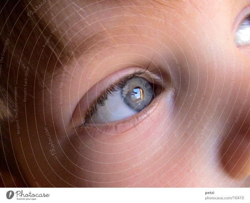 Kindlicher Augenblick Haare & Frisuren Gesicht blau Wange Farbfoto mehrfarbig Außenaufnahme Detailaufnahme Zentralperspektive Blick nach vorn