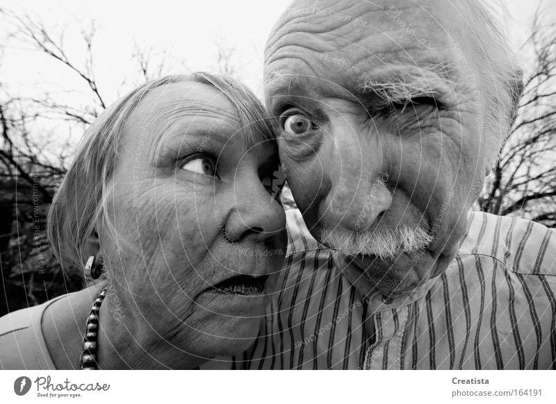 Mensch Frau Mann Gesicht Erwachsene Auge Senior Porträt maskulin Schwarzweißfoto Weitwinkel 60 und älter Weiblicher Senior Männlicher Senior Blick Perspektive