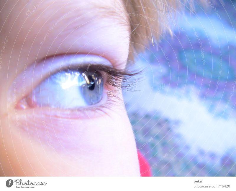 Der blaue Blick Gesicht Kind Auge Himmel Hälfte Wimpern Aufapfel Farbfoto mehrfarbig Außenaufnahme Textfreiraum rechts Blick nach vorn