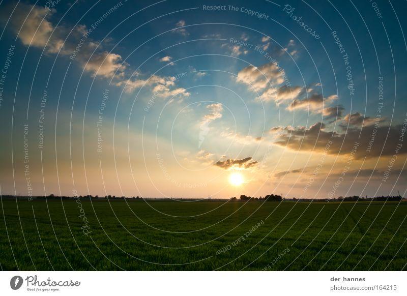 Verstahlung Himmel Natur blau grün Pflanze Sonne Sommer Wolken Umwelt Landschaft gelb Leben Wärme Gras Sonnenaufgang Luft