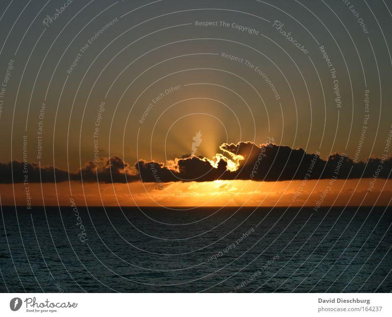 The perfect moment Himmel Natur Wasser Ferien & Urlaub & Reisen schön Sommer Sonne Meer Wolken schwarz Landschaft gelb Sonnenuntergang hell Horizont