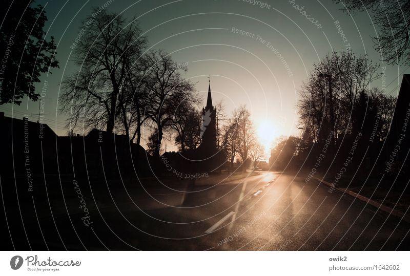 Schlafenszeit Baum ruhig Haus Straße Verkehr leuchten Idylle Kirche Skyline Dorf Feierabend bevölkert Sachsen-Anhalt Dorfidylle