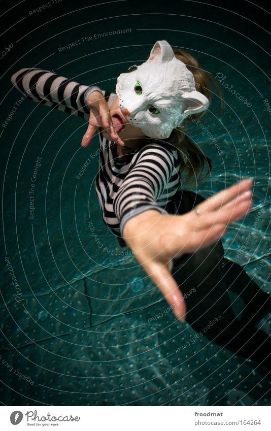 Katzenwäsche Katze Mensch Frau Wasser Hand schön Erwachsene Leben feminin Schwimmen & Baden elegant außergewöhnlich Finger ästhetisch verrückt Schwimmbad