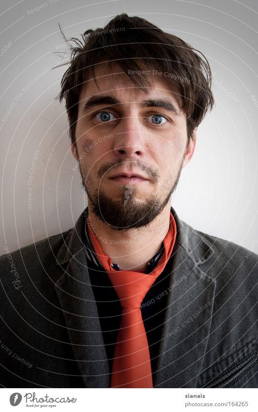 slump Mensch Mann Erwachsene Gesicht Leben Kopf maskulin Behaarung Lifestyle Porträt Student Bart brünett trashig Rauschmittel Wirtschaft