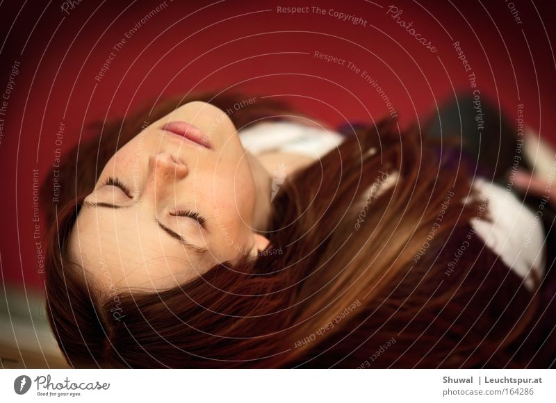 La Belle au bois dormant Frau Mensch Jugendliche schön rot ruhig schwarz Erwachsene Gesicht Erholung feminin Haare & Frisuren träumen elegant Haut