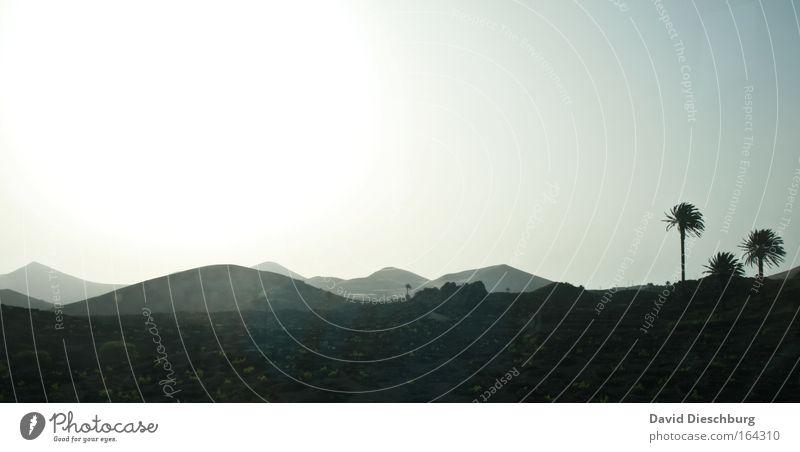 Landschaft im Afri-Cola-Style Farbfoto Außenaufnahme Textfreiraum links Textfreiraum oben Textfreiraum unten Morgen Morgendämmerung Tag Schatten Kontrast