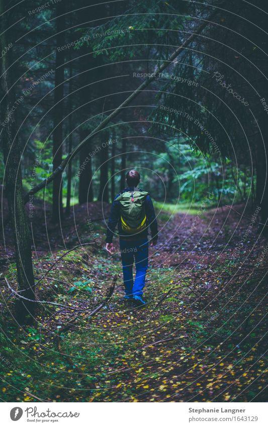 Wandertag Mensch maskulin Junger Mann Jugendliche Erwachsene 1 18-30 Jahre 30-45 Jahre Umwelt Natur Landschaft Pflanze Baum Wald Erholung wandern gehen reisen