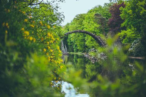 Rakotzbrücke Natur Pflanze Sommer Wasser Baum Architektur Frühling gehen Park wandern Blühend beobachten Brücke Duft Teich Grünpflanze