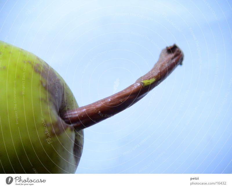 Stängel einer Birne Frucht Holz blau braun Stengel gekrümmt grün-gelb Hintergrundbild gerillt Farbfoto Außenaufnahme Detailaufnahme Makroaufnahme Menschenleer