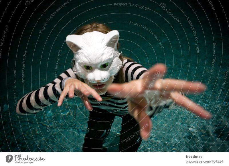 Katzentatzen Farbfoto Innenaufnahme Abend Kunstlicht Schwache Tiefenschärfe Vogelperspektive Oberkörper Blick Blick in die Kamera Mensch feminin Frau Erwachsene