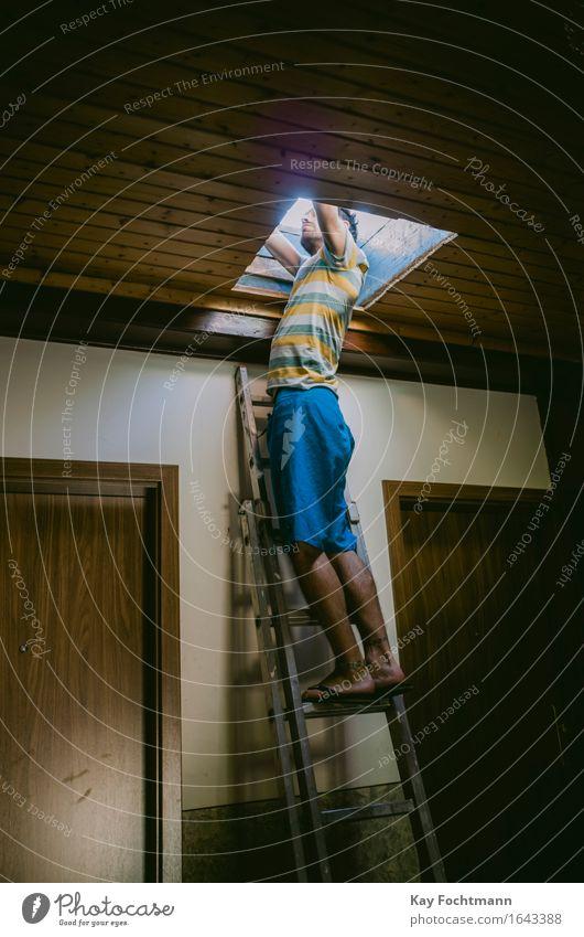 Junger Mann steht auf Sprossenleiter und schaut aus der Dachluke Freizeit & Hobby Abenteuer Sommer Wohnung Treppenhaus Leiter Mensch maskulin Erwachsene Leben 1