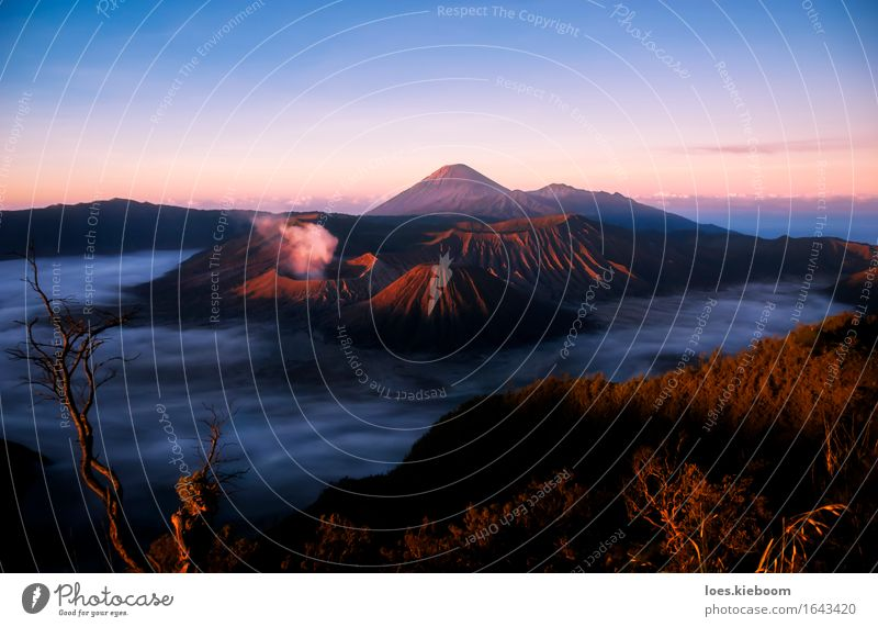 Volcanos at sunrise in Java Ferien & Urlaub & Reisen Natur Park Vulkan glänzend blau rot bromo indonesia volcano gunung volcanic mountain landscape smoke