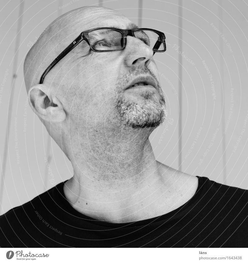 . maskulin Mann Erwachsene Leben Kopf 1 Mensch 45-60 Jahre T-Shirt Glatze beobachten entdecken Vorsicht Gelassenheit geduldig ruhig Selbstbeherrschung