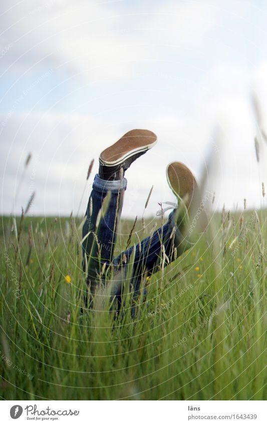 glücksfall Mensch Frau Natur Landschaft Freude Erwachsene Umwelt Leben Frühling Gefühle Wiese natürlich Gras feminin Beine Spielen