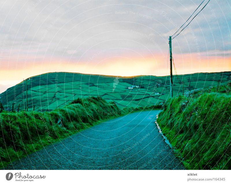Himmel Natur grün Baum Pflanze Freude ruhig Einsamkeit Erholung Freiheit Herbst Landschaft Traurigkeit Wetter Feld natürlich