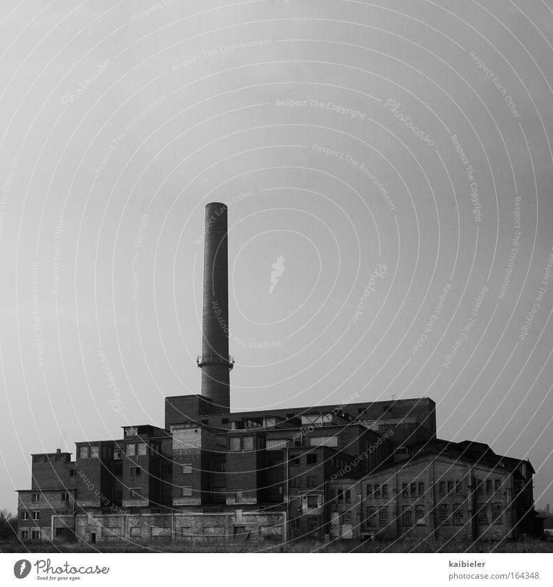 Fels in der Brandung alt grau Traurigkeit Gebäude gehen Industrie Fabrik Wandel & Veränderung Vergänglichkeit Verfall Vergangenheit Schornstein Nostalgie
