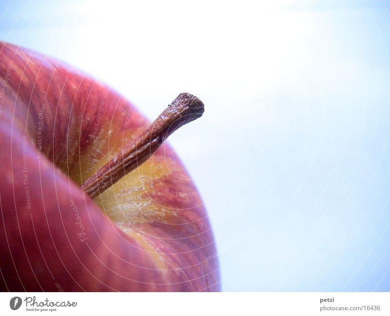 Apfelstängel Frucht schön Gesundheit Holz braun knackig Stengel gedreht rotbackig gesprengelt Farbfoto Außenaufnahme Textfreiraum rechts Textfreiraum oben